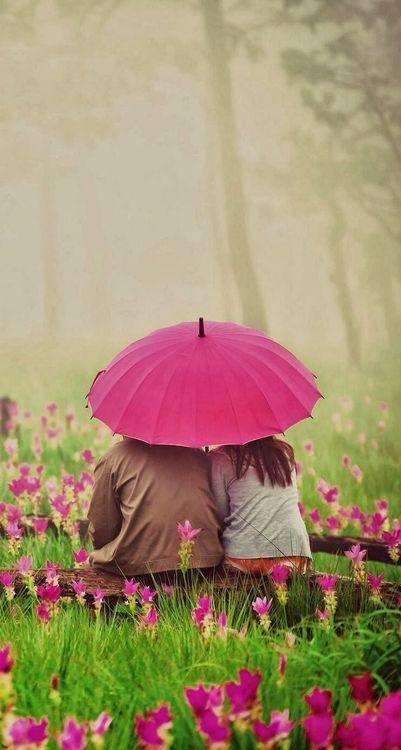 Spring rain...together