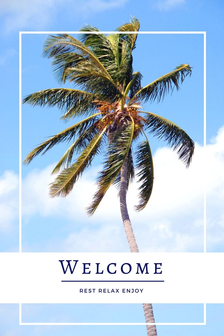Compiling the perfect welcome book package for your vacation home. The more information, the fewer calls/emails you will get. 10 Item Package -- Vacation Rental Welcome Booklet Template Instant Digital Download Word Files -Rental Agreement, Application, Deposit Receipt