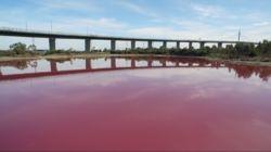 Na de groene rivier en het fuchsia kraantjeswater nu ook het roze meer - HLN.be