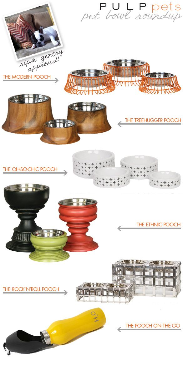 Great Pulp Pets Modern Dog Bowl Roundup With Bailey Fine Pet Furniture.