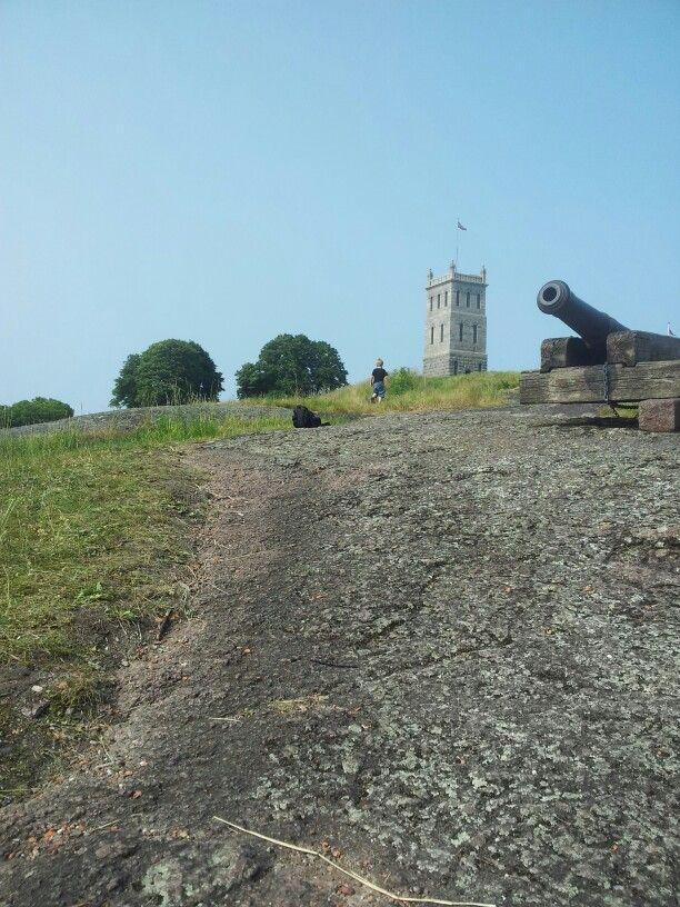 Natur Slottsfjelltårnet i Tønsberg