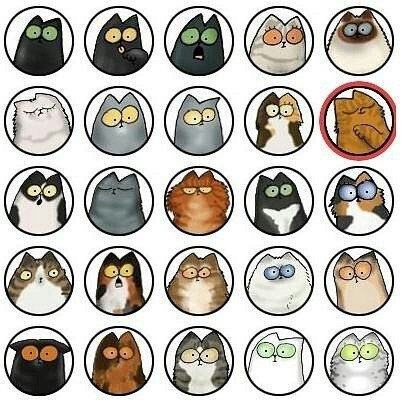 Choose your own cat:P
