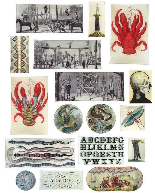 46 best ideas about artist john derian on pinterest for John derian dry goods