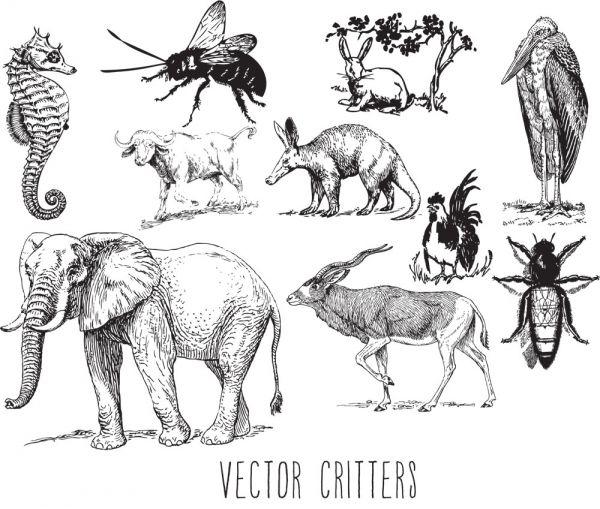 Download Vector Critters