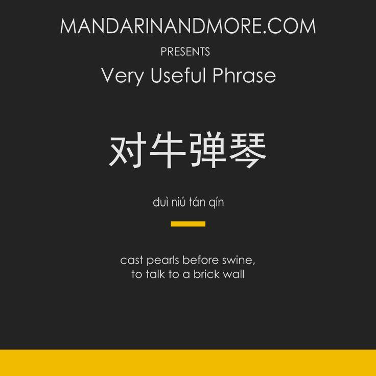 例如:  1. 不要对牛弹琴。[Bùyào duì niú tán qín.] 2. 你叫他英语,那只是对牛弹琴。【Nǐ jiào tā yīngyǔ, nà zhǐshì duì niú tán qín.】  #chinese #mandarin #learnchinese