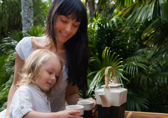 Organic Miracles Moringa tea