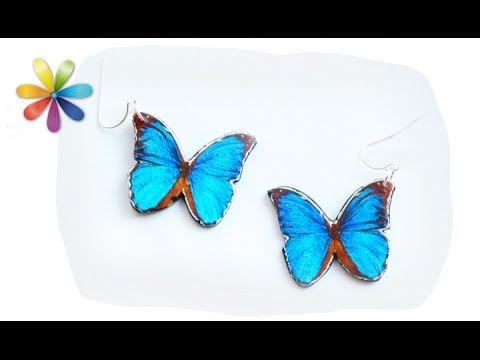 Сережки-бабочки: трендовые, объемные и легкие! – Все буде добре. Выпуск 835 от 29.06.16 - YouTube