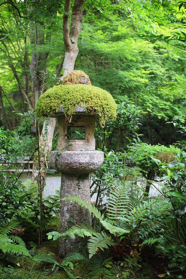 Mossy Stone Lantern, Kozanji, Kyoto, Japan