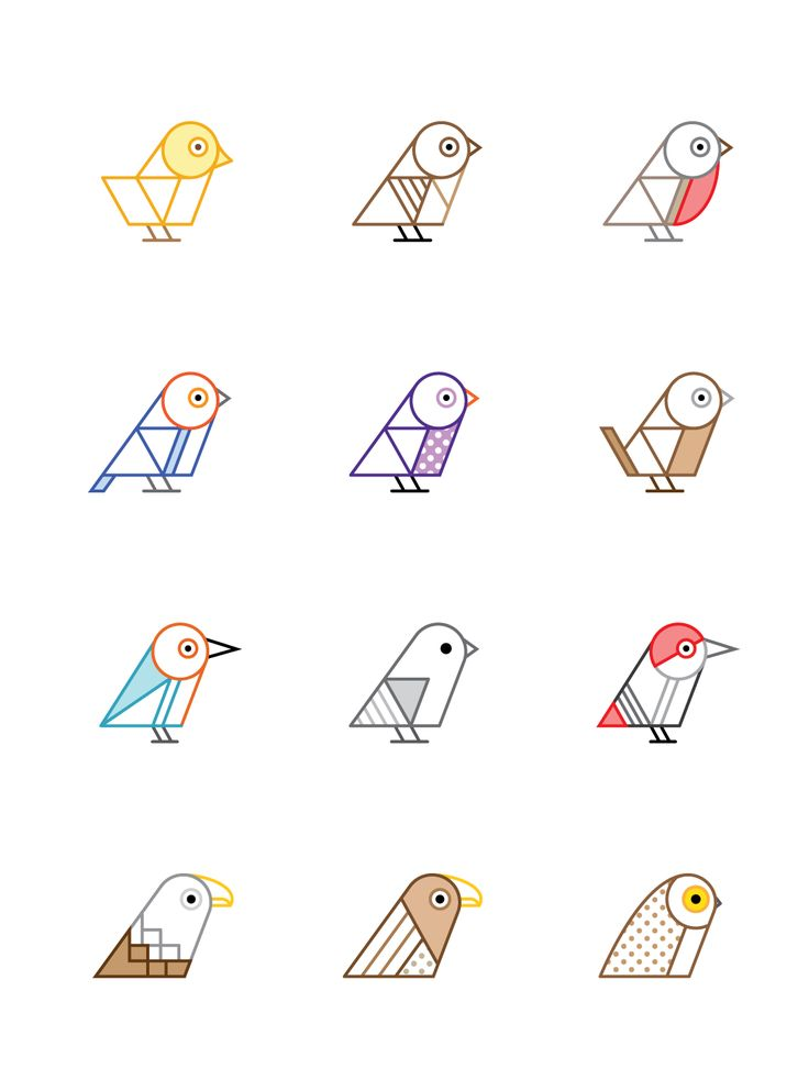 Birds of Britain Illustrations Series