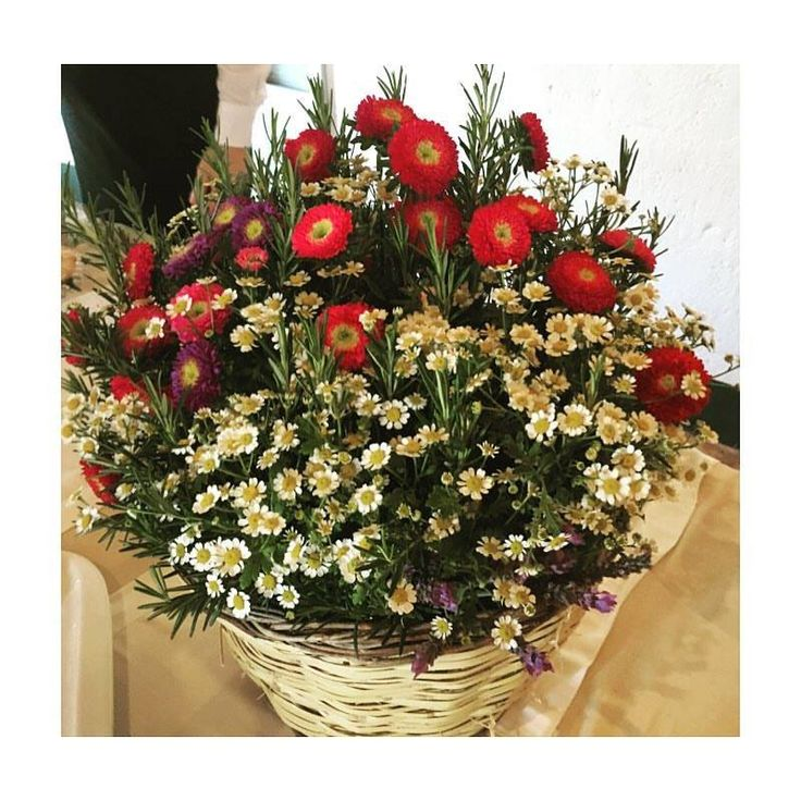Decorazioni, fiori rossi e bianchi