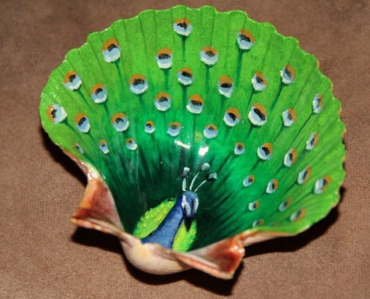 Shell painted like a peacock