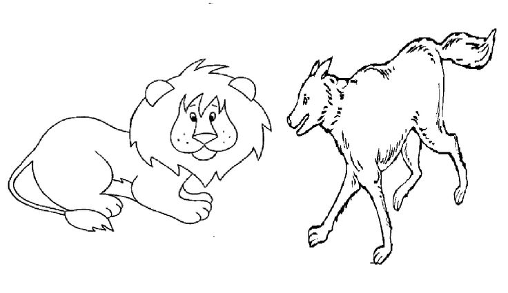 Lion And Wolves