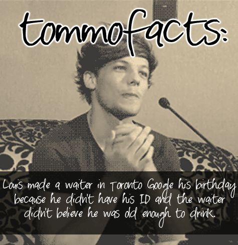 Louis Tomlinson Memes | louis tomlinson One Direction boobear tommofacts tommofacts •