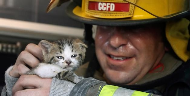 Corpus Christi Fire Department Captain John Leahey examines one of two cats rescued from a small duplex fire on Oct. 20, 2008, in Corpus Christi, Texas (© Rachel Denny Clow/Corpus Christi Caller-Times/AP)