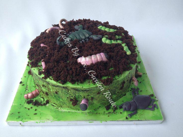 Boys birthday insect cake.