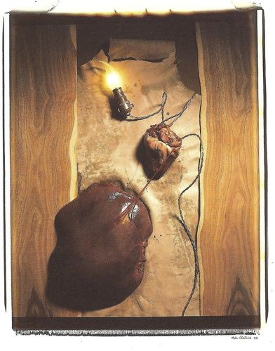 "Helen Chadwick ""Meet Abstract No.5: Heart of liver"" (1989) Fotografía Polaroid y seda. Medidas: 81x71 cm"