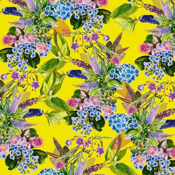 Chatham Island Forget-me-not, New Zealand Flora Series, Limited Edition, 3 sizes from NZ$145