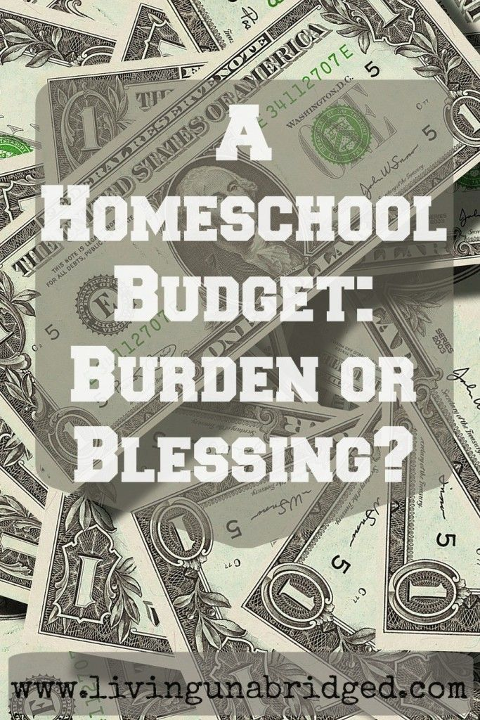 Homeschool Budget: burden or blessing?
