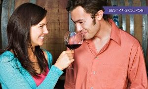 Beer- or Wine-Making Course with Take-Home Bottles at Brew and Wine Hobby in Brew and Wine Hobby. Groupon deal price: $30