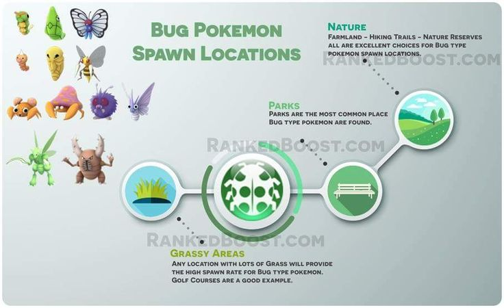 bug pokemon spawn locations