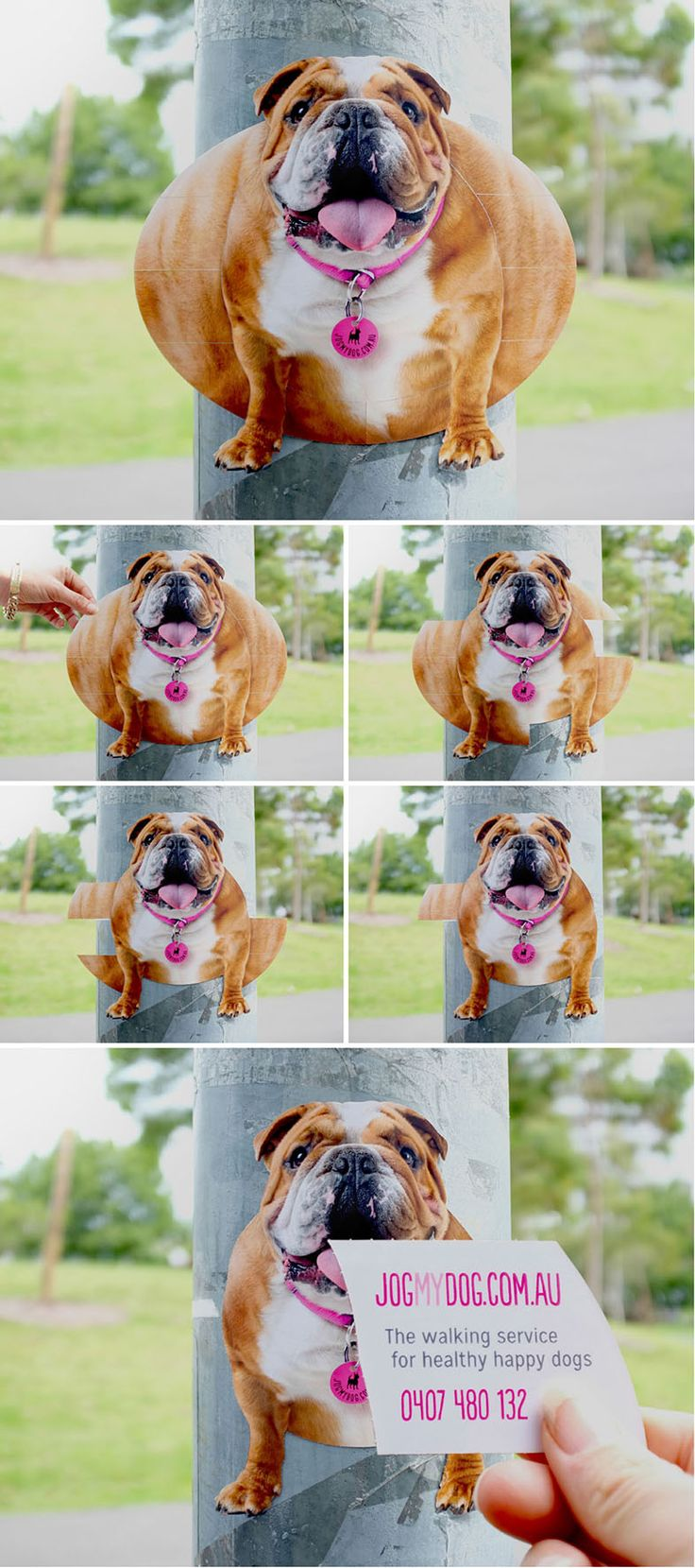 "Jogmydog: Dog Walking - ""The walking service for healthy happy dogs."" #Advertising"