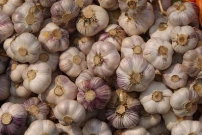 HOW TO EAT RAW GARLIC & NOT HAVE GARLIC BREATH: THINGS YOU'LL NEED  Paring knife  Fresh parsley  Plain yogurt or milk  Fresh sage leaves  Cardamom pods  Toothbrush and toothpaste  Dental Floss  Mouthwash