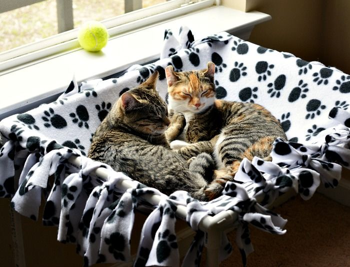 My kitties would love this no sew #DIY #cat hammock! Such a fun idea and so easy to make!