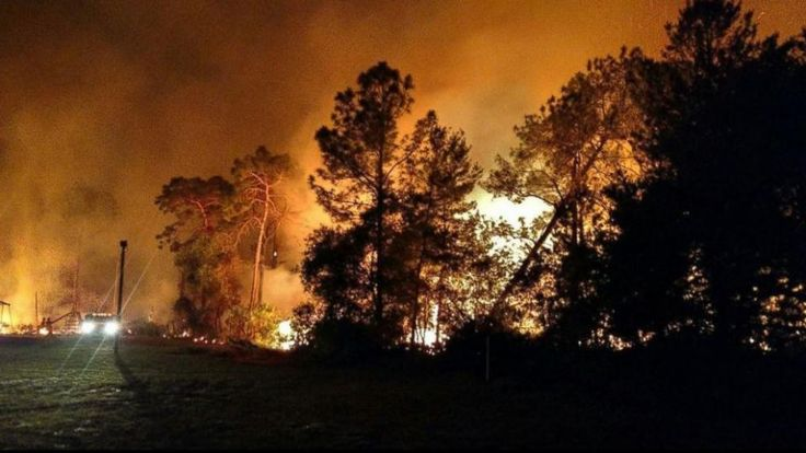 Forest fires have continued to keep firefighters busy in Florida on Sunday. There are still 110 active fires covering 20,285 acres, according to the Florida Forestry Service. The destructive wildfi…