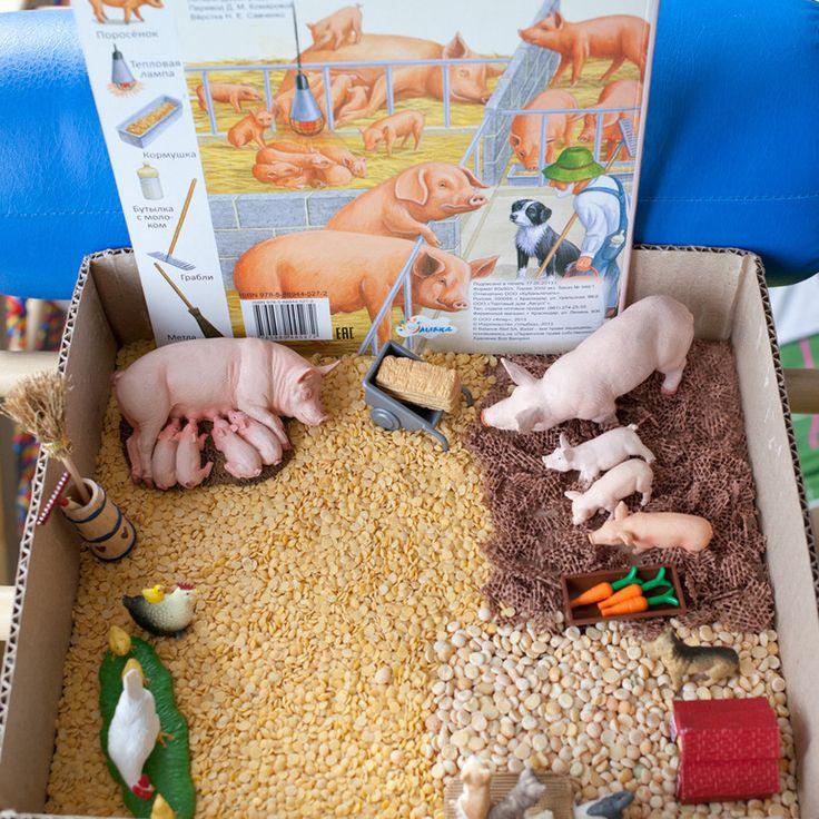 Тема недели: Свинарник. Изучаем ферму - Раннее развитие - Babyblog.ru