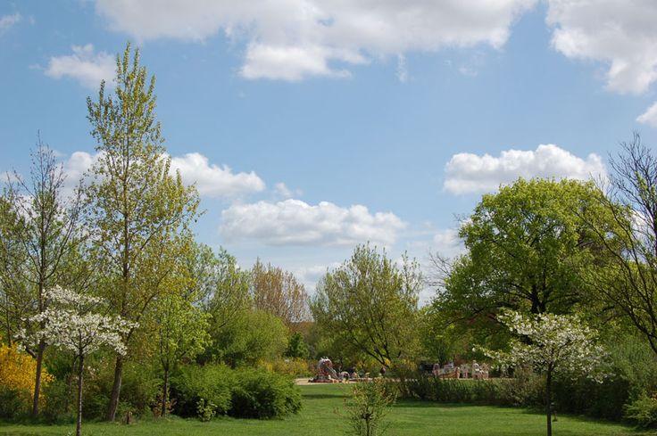 Berlin Thälmannpark im Sommer. Summer Park.