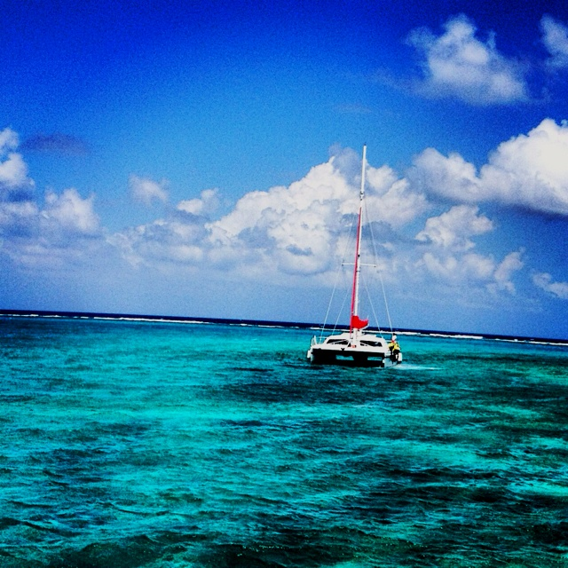Grand Caymanscatamaran to Stingray City May 2013: Favorite Places