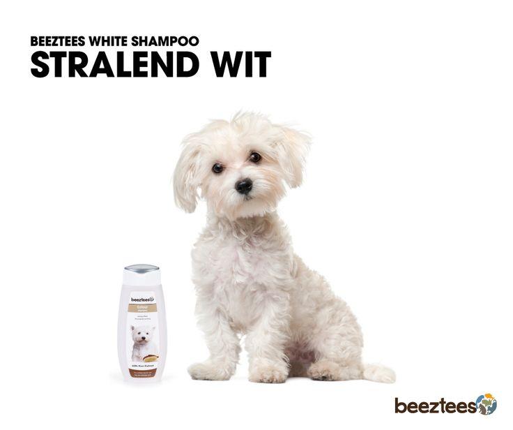 Beeztees Colour White Shampoo. Geschikt voor honden met een witte vacht. De toevoeging van Rice extract heeft een verzorgende werking en zorgt voor een soepele, zacht e gezonde vacht.