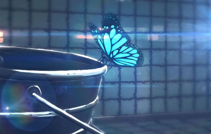 The blue butterfly - Life is Strange