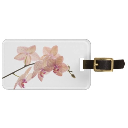 $8.95 Pink and Peach Dendrobium Orchid - Customized Bag Tags