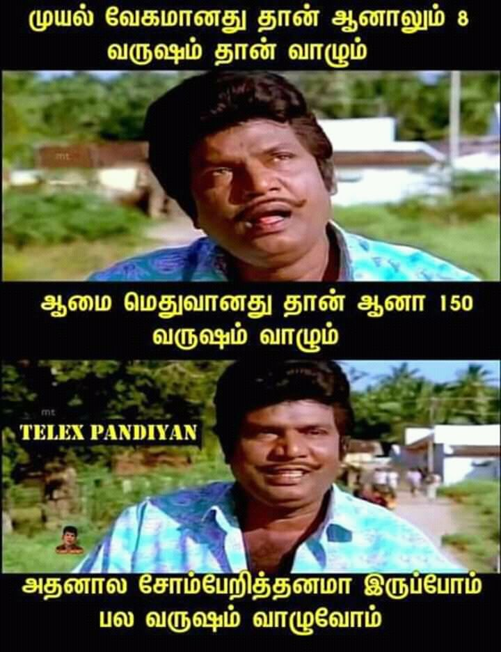 Aama Paa Funny Meme Pictures Tamil Funny Memes Very Funny Jokes
