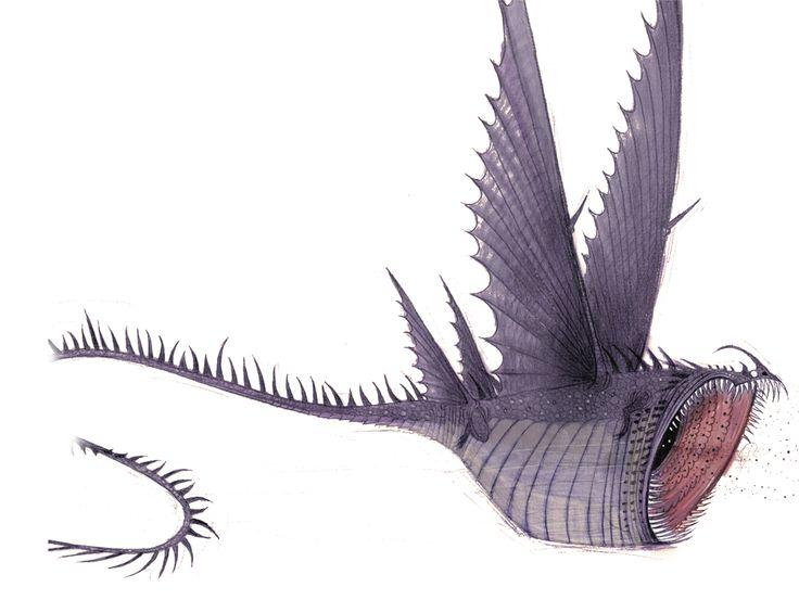 Thunderdrum dragon drawing Paper