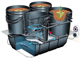 NFT Hydroponics System | grow plants without soil