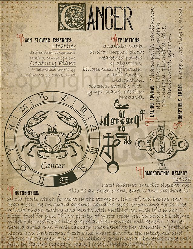 Cancer Zodiac Sign 6 – ☪︎Grimoire☪︎