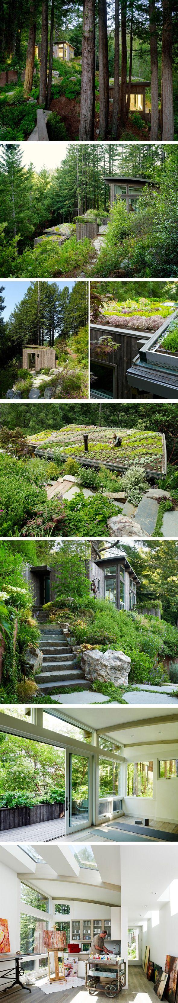 Mill-Valley-Cabins-Feldman-Architecture-2