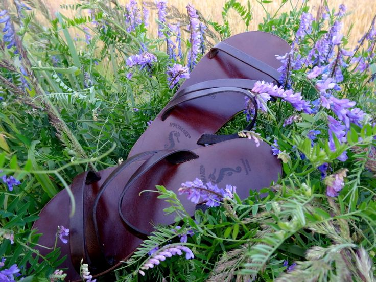 najwygodniejsze buty świata - Ippomare ;)