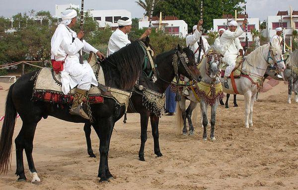 Berber-warriors-show-Morocco-wikipedia-600-px-tiny-May-2015-Notwist-Tetrapod-Zoology