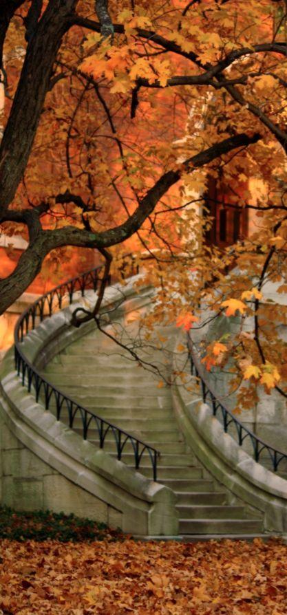 Autumn stairway at Vanderbilt University in Nashville, Tennessee • photo: fall