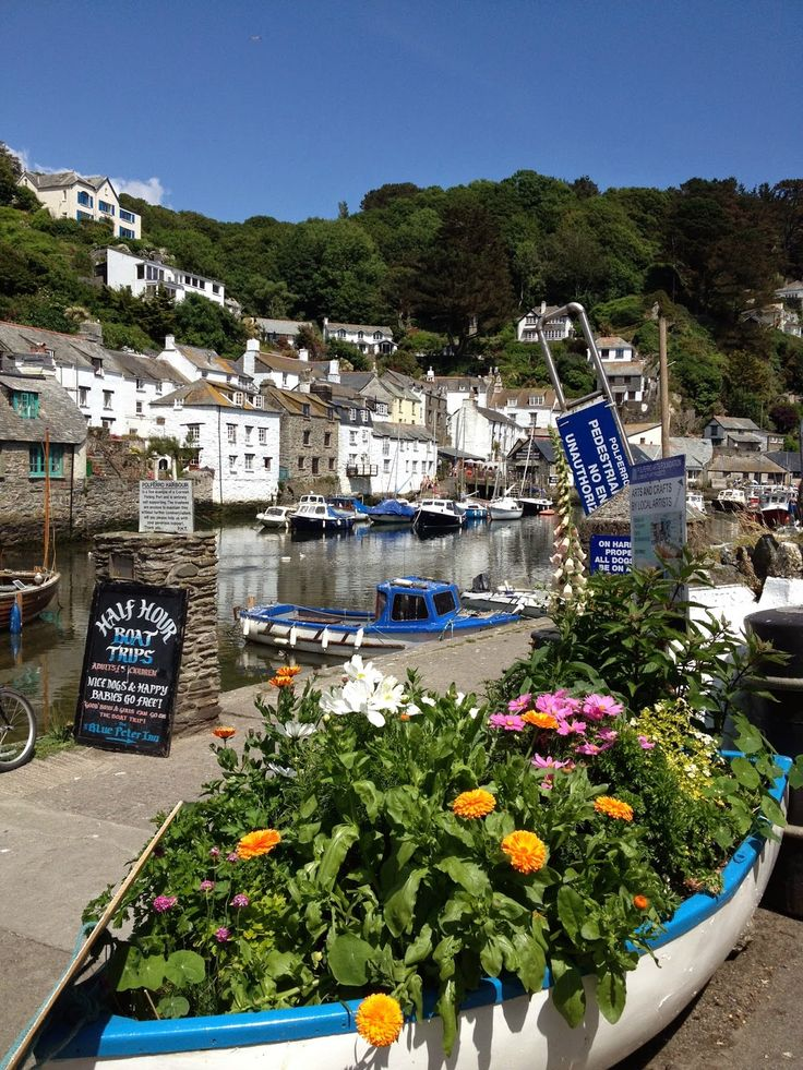 Cornish Chickpea: Samba at Polperro