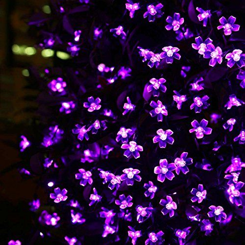 LE® Solar Fairy Lights, 23ft, Waterproof, 50 LEDs, 1.2 V, Violet, Portable, with Light Sensor, Outdoor Blossom String Lights, Ideal for Christmas, Wedding, Party Lighting EVER http://www.amazon.com/dp/B00OH4XRDM/ref=cm_sw_r_pi_dp_niz4ub0NSAY5G