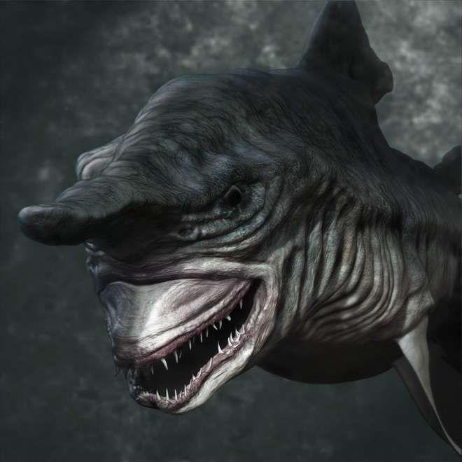 Requin gobelin.
