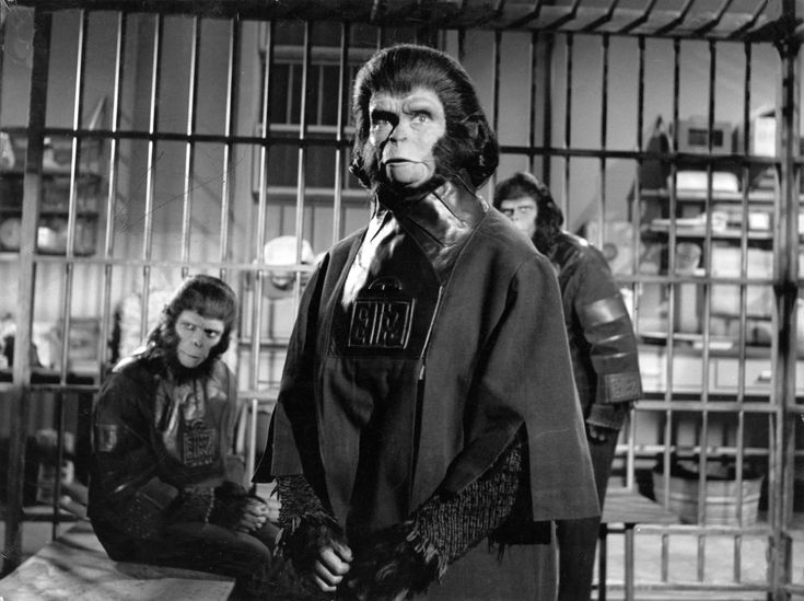 Escape from the Planet Of The Apes - Kim Hunter, Roddy McDowall and Sal Mineo