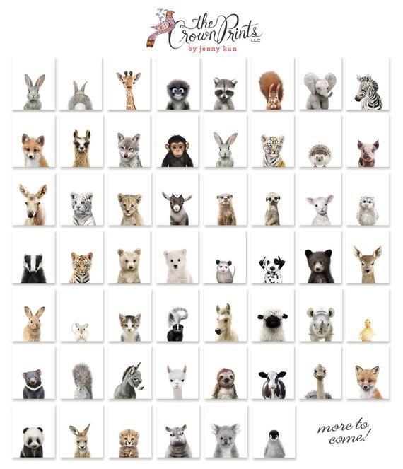 Set of 2 bunny prints, PRINTABLE wall art, The Crown Prints, Nursery art, Woodland animals, Nursery art, Baby animal prints, Nursery animals