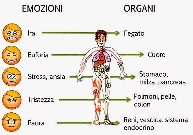Di Riccardo Dapretto P.T. - riccardodaprettopersonaltrainer.blogspot.it Le malattie ed i sintomi altro non sono che messaggi inviati dal corpo ad una mente