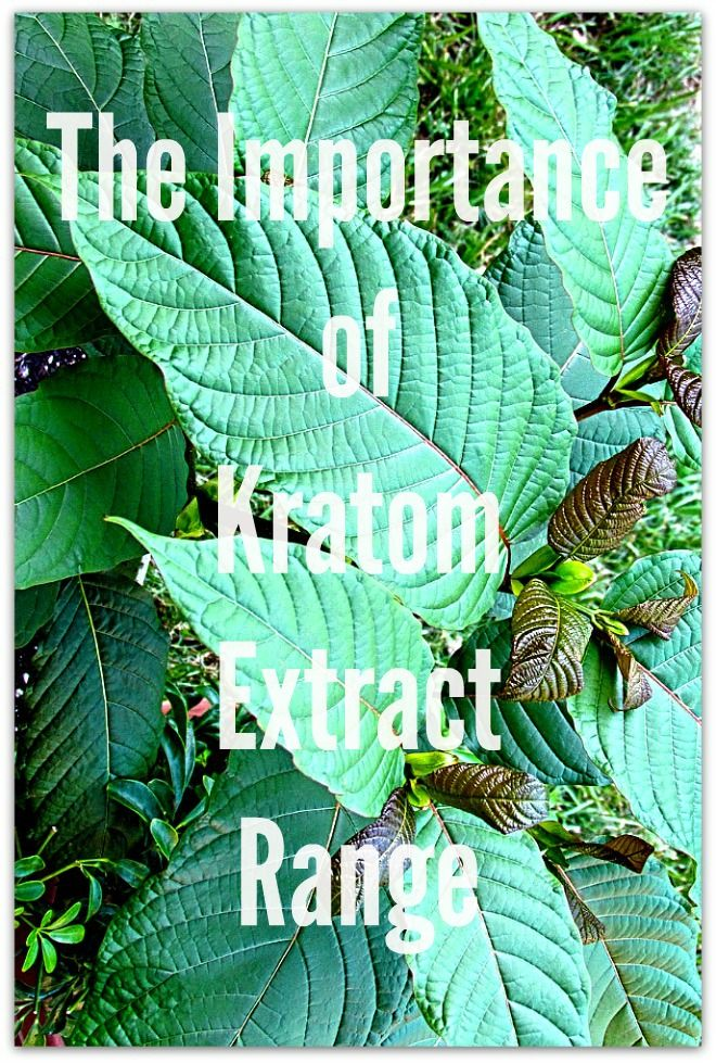The Importance of Kratom Extract Range