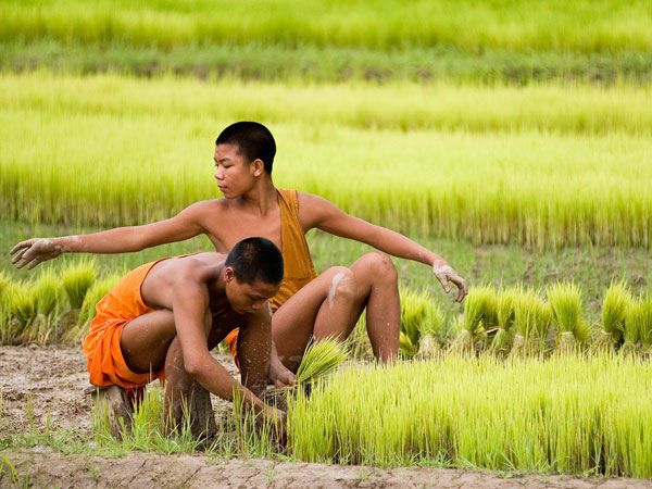 Workers - Luang Namtha, Laos by whl.travel, via Flickr